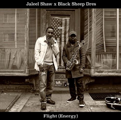 Jaleel Shaw & Dres - Flight (Energy)