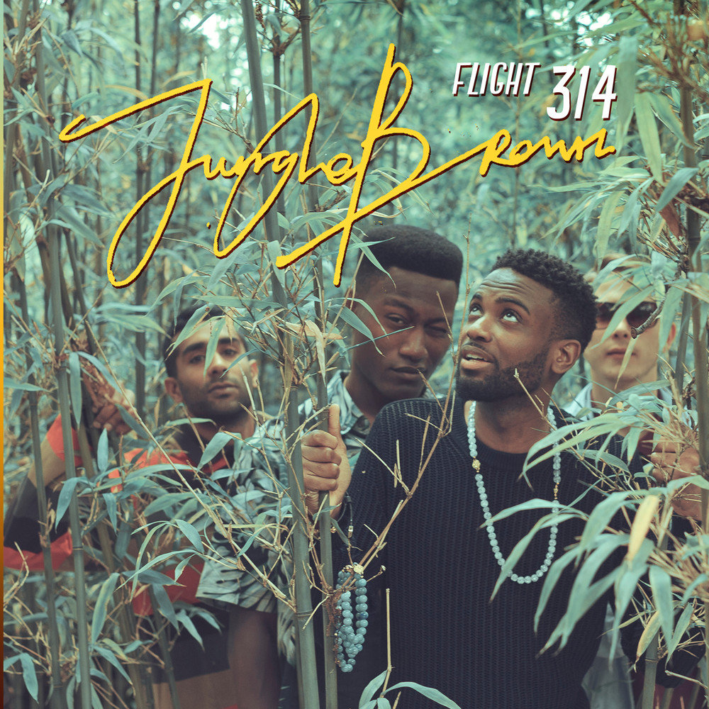 Jungle Brown - Flight 314